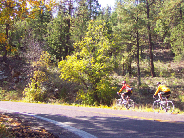 Road biking in the Gila - between Hillsboro and Kingston