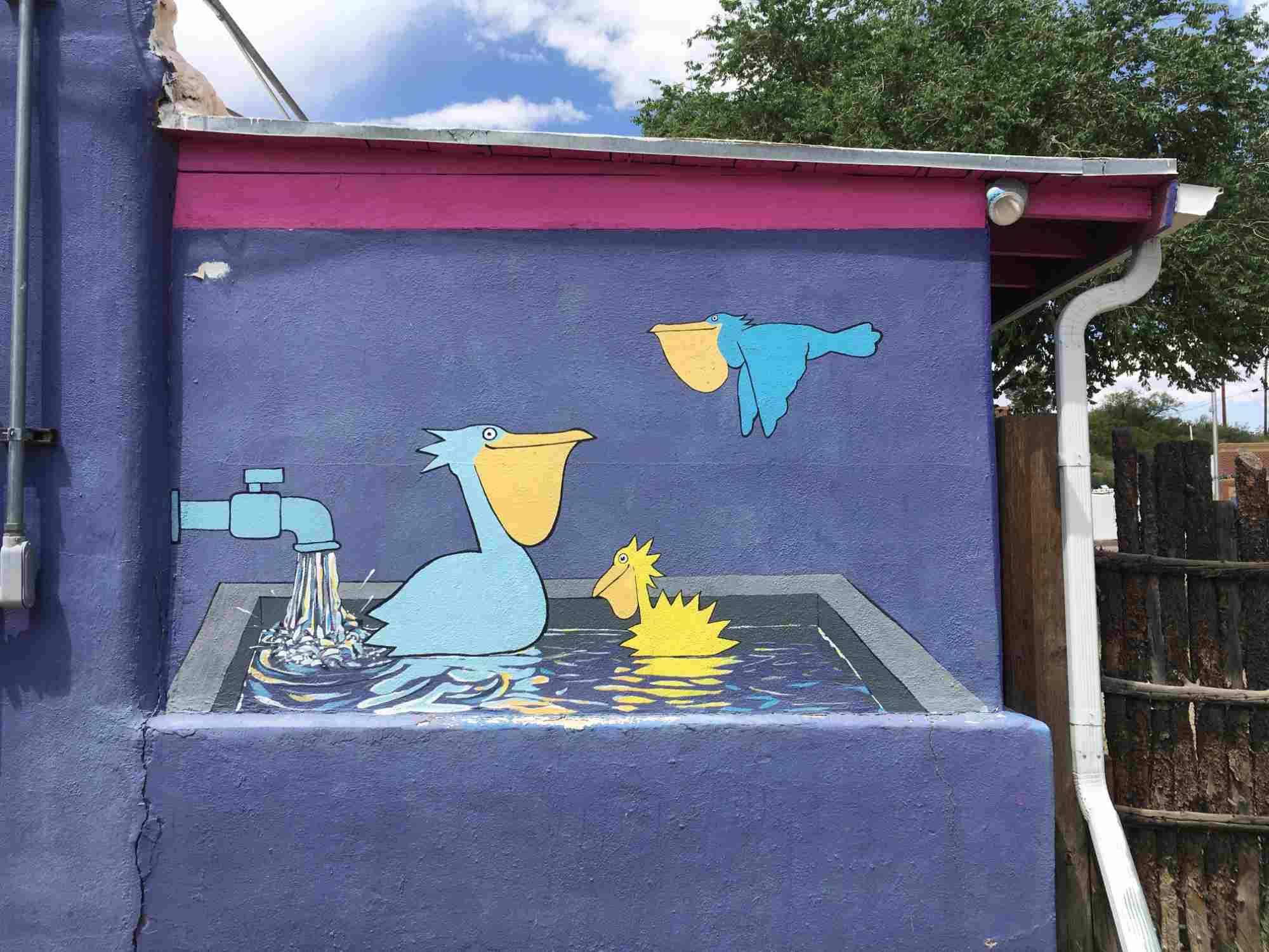 Pelicans soaking in hot springs - Pelican Spa alley near A&B Drive In