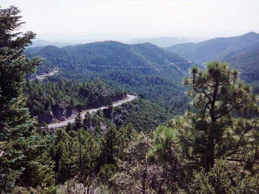 winding roads of the Black Range in the Gila
