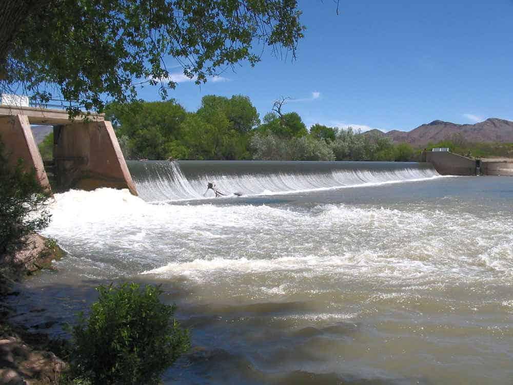 Percha Dam State Park - prime birding spot in Sierra County New Mexico