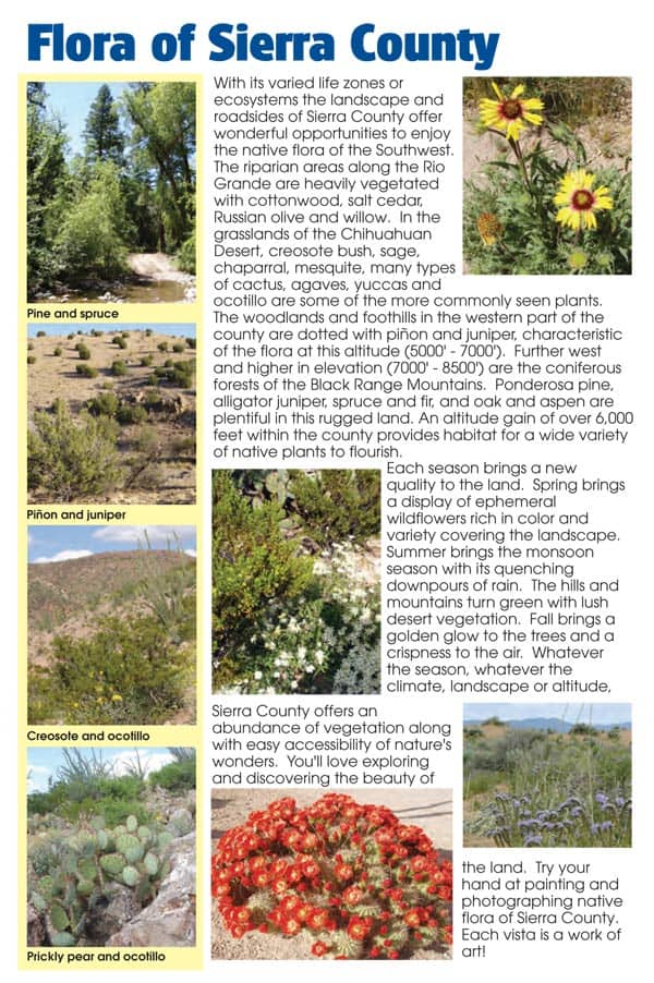 Day Trips of Sierra County page 33