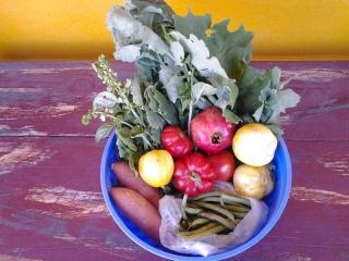 vegetables in Truth or Consequences New Mexico