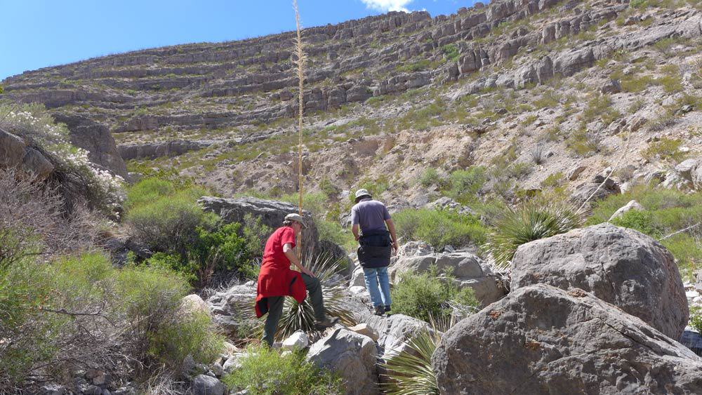 hiking on the Armendaris Ranch as part of Turner Expeditions