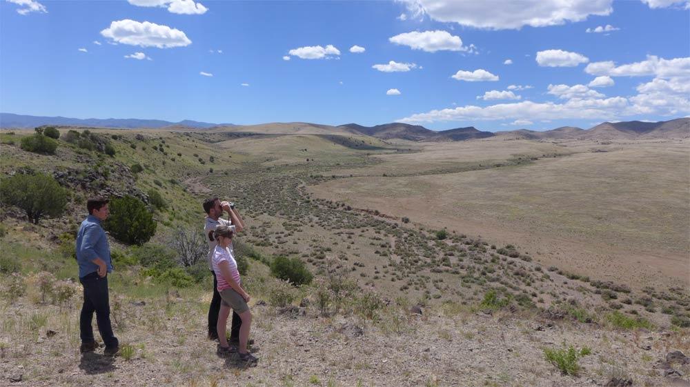 birding on the Ladder Ranch