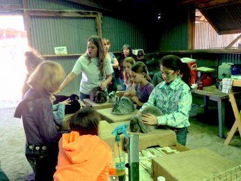 Bunny class at the Sierra County Fair