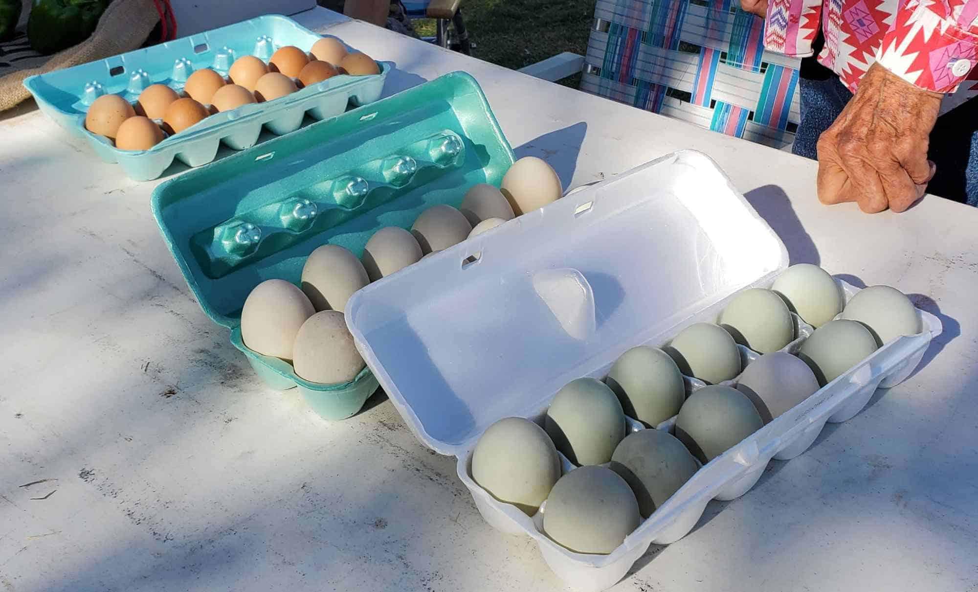 Sierra County Farmers Market eggs