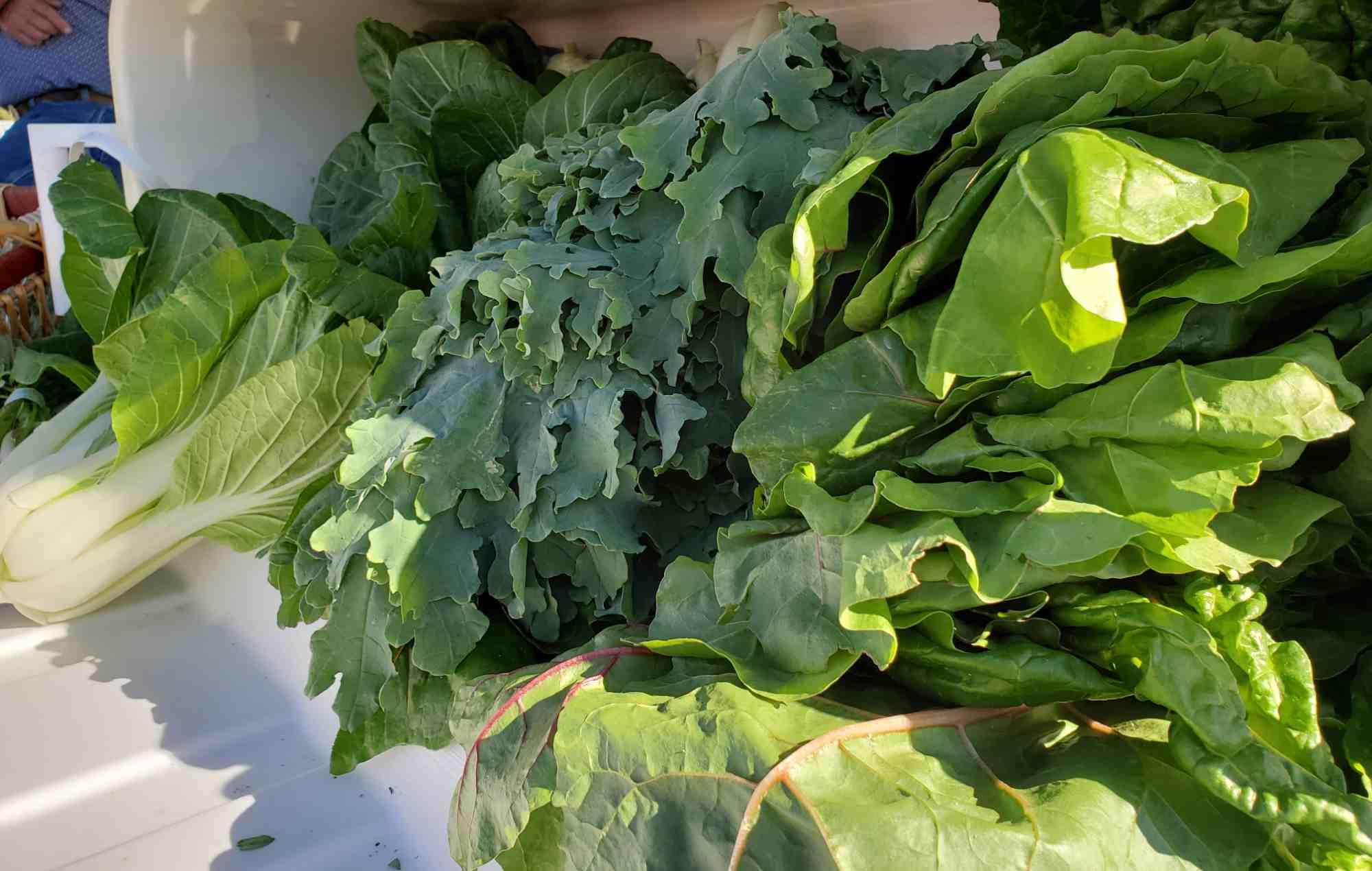 Sierra County Farmers Market greens