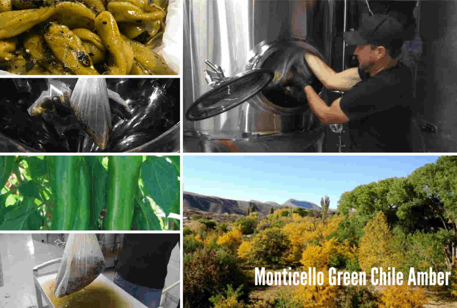 Monticello Green Chile Amber beer release at TorC Brewing