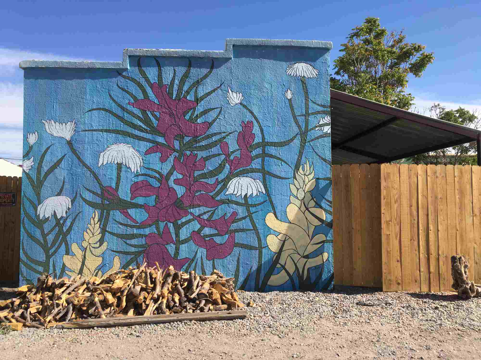 mural by Reed Rische at Mesilla Healing